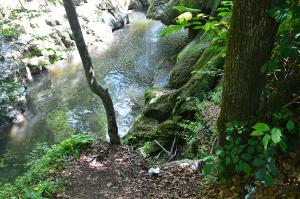 cascada bigar Bozovici