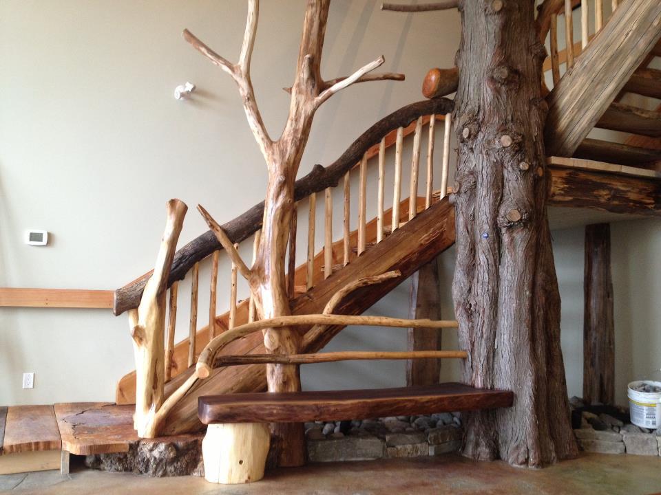 Case de lemn zambesc for Case de lemn rotund
