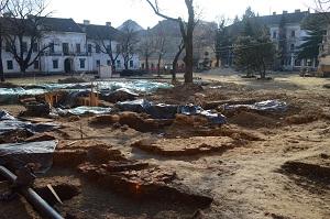Poze sapaturi Timisoara