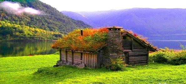 case din piatra