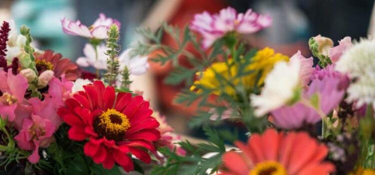 florarie-online-bucuresti (3)